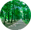 Парк імя Першага мая (Гарадскі парк)